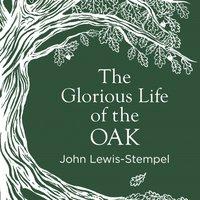 Glorious Life of the Oak - John Lewis-Stempel - audiobook