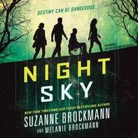 Night Sky - Suzanne Brockmann - audiobook
