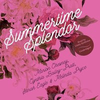 Summertime Splendor - M. C. Beaton writing as Marion Chesney - audiobook