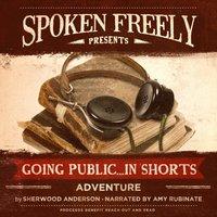 Adventure - Sherwood Anderson - audiobook