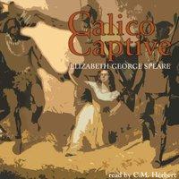 Calico Captive - Elizabeth George Speare - audiobook
