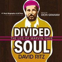Divided Soul - David Ritz - audiobook