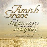 Amish Grace - Donald B. Kraybill - audiobook