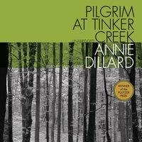 Pilgrim at Tinker Creek - Annie Dillard - audiobook