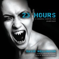 23 Hours - David Wellington - audiobook