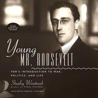 Young Mr. Roosevelt - Stanley Weintraub - audiobook