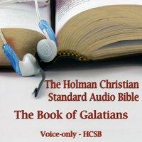 Book of Galatians - Opracowanie zbiorowe - audiobook