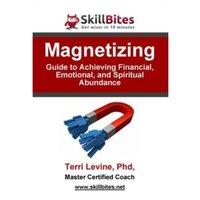 Magnetizing - Terri Levine - audiobook
