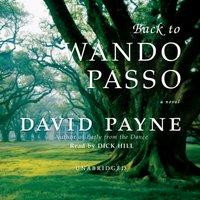 Back to Wando Passo - David Payne - audiobook
