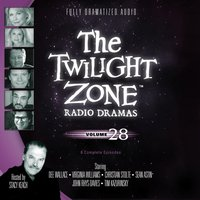 Twilight Zone Radio Dramas, Vol. 28 - various authors - audiobook