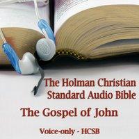 The Gospel of John - Opracowanie zbiorowe - audiobook