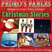 Spanish Christmas Stories for Children - Pedro Pablo Sacristan - audiobook
