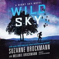 Wild Sky - Suzanne Brockmann - audiobook