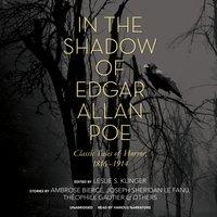 In the Shadow of Edgar Allan Poe - Leslie S. Klinger - audiobook