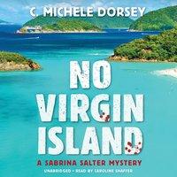 No Virgin Island - C. Michele Dorsey - audiobook
