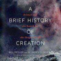 Brief History of Creation - Bill Mesler - audiobook
