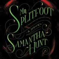 Mr. Splitfoot - Samantha Hunt - audiobook