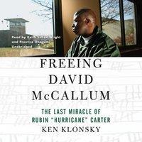 Freeing David McCallum - Ken Klonsky - audiobook