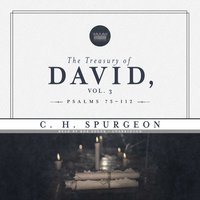 Treasury of David, Vol. 3 - C. H. Spurgeon - audiobook