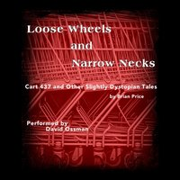 Loose Wheels and Narrow Necks - Brian Price - audiobook