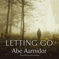Letting Go - Abe Aamidor - audiobook