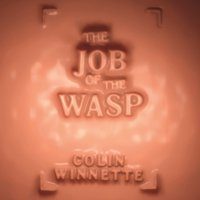 Job of the Wasp