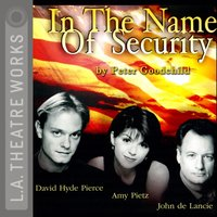 In the Name of Security - Peter Goodchild - audiobook