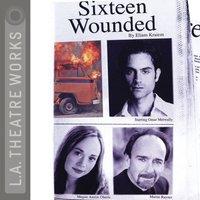 Sixteen Wounded - Eliam Kraiem - audiobook