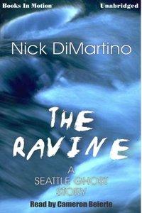 Ravine, The - Nick Dimartino - audiobook
