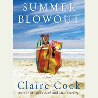 Summer Blowout - Claire Cook - audiobook
