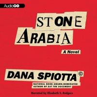 Stone Arabia - Dana Spiotta - audiobook