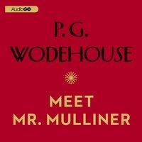 Meet Mr. Mulliner - P. G. Wodehouse - audiobook