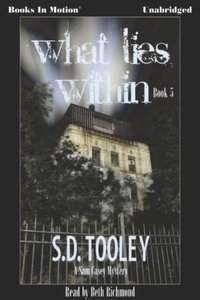 What Lies Within - S.D. Tooley - audiobook