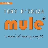 Mule - Tony D'Souza - audiobook