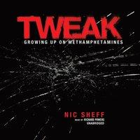 Tweak - Nic Sheff - audiobook