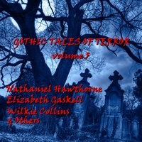 Gothic Tales of Terror - Nathaniel Hawthorne - audiobook