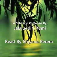 Rumi - A Selection Of His Poems (Unabridged) - Jalaluddin Rumi - audiobook