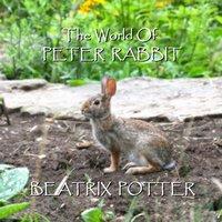 Beatrix Potter The Short Stories