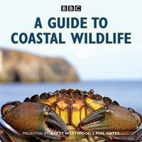 Guide to Coastal Wildlife - Brett Westwood - audiobook
