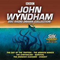 John Wyndham: A BBC Radio Drama Collection - John Wyndham - audiobook
