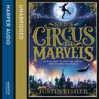 Ned's Circus Of Marvels - Justin Fisher - audiobook
