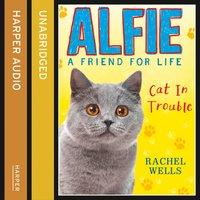 Alfie Cat In Trouble - Rachel Wells - audiobook