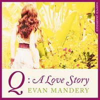Q: A Love Story - Evan J. Mandery - audiobook