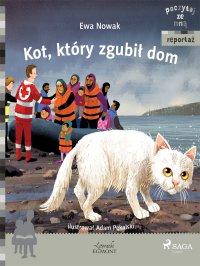 Kot, który zgubił dom