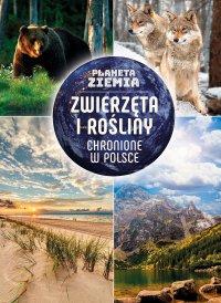Planeta Ziemia. Zwierzęta i rośliny chronione w Polsce - Karolina Matoga - ebook