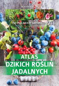 Atlas dzikich roślin jadalnych - Monika Fijołek - ebook