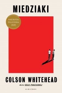 Miedziaki - Colson Whitehead - ebook
