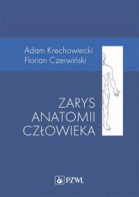 Zarys anatomii człowieka - Adam Krechowiecki - ebook