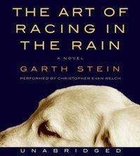 Art of Racing in the Rain - Garth Stein - audiobook