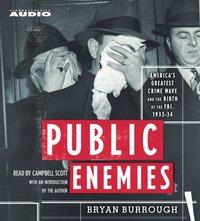 Public Enemies - Bryan Burrough - audiobook